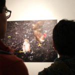 Exposición por los 10 años de los Derechos de la Naturaleza en el Museo de la Ciudad