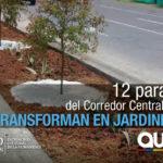 Jardineras reemplazan las paradas del Corredor Central Norte