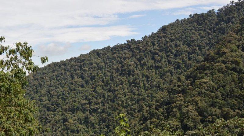 Patrimonio Natural De Quito Es Reconocido Por La Unesco Quito Informa
