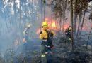 70 bomberos continúan con labores para controlar el incendio forestal en Nayón