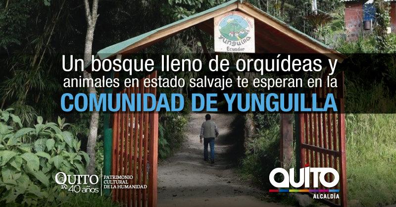 Una aventura de vacaciones en territorio de osos, pumas y orquídeas a 35 minutos de Quito