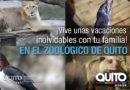 Este verano experiencias únicas y mágicas en el Zoológico de Quito