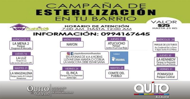 Se fortalecen las campañas de esterilización animal en Quito