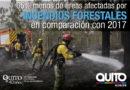 De julio a septiembre, 1 479 atenciones por fuego forestal