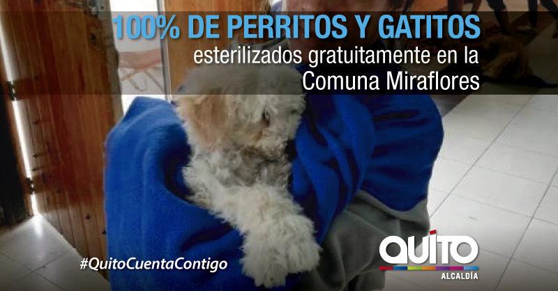 Fauna Urbana del Parque Metropolitano Guanguiltagua bajo estricto control y protección