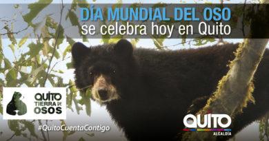 Quito tierra de Osos celebra el Día Mundial del Oso
