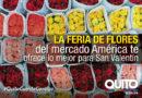 Mercado América se viste de flores en San Valentín