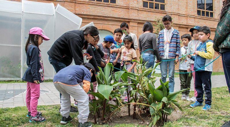Punto verde del Centro de Arte Contemporánero cumple su primer aniversario