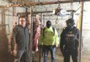 Operativos para evitar el faenamiento ilegal en camales clandestinos