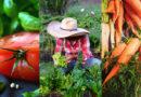 'Jueves de yapas' en el Mercado La Floresta