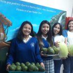 Colegio Municipal Alfredo Pérez Guerrero organiza Feria Agrícola