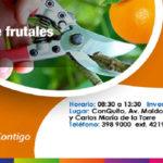 Curso de manejo de frutales se realizará en ConQuito