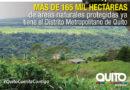 Dieciocho mil hectáreas, adicionales, en el noroccidente fueron declaradas como área protegida