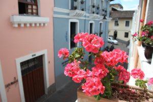 Geranios en balcones del Centro Histórico