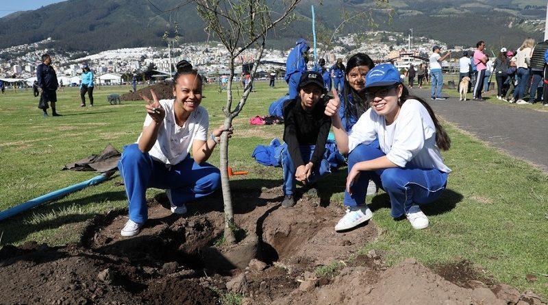 Un millón de árboles para Quito