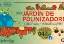 Participe del taller Jardín de Polinizadores