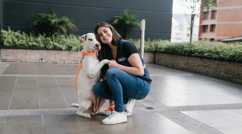 Guía de bienestar animal