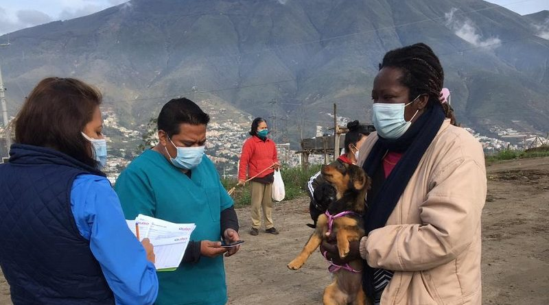 Urbanimal esteriliza animales de compañía